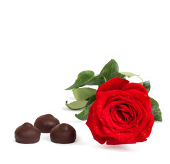 Red rose with green leaves and chocolate isolated on white backg