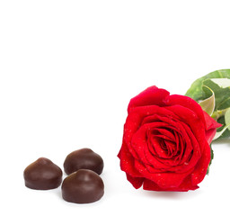 Red rose with green leaves and chocolate, isolated on white back