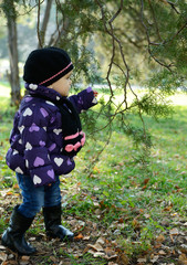 Cute liitle girl playing in autumn park near tree, nature outdoo