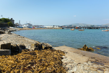 Coast at Swanage Dorset by harbour and pier