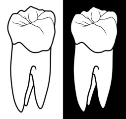 Tooth With Root - Graphic Style