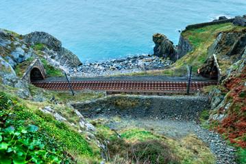 Scenic Railroad in Ireland