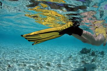Snorkeling in beautiful blue lagoon
