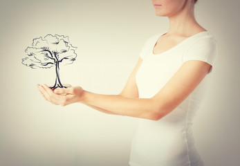 woman with small tree in her hands