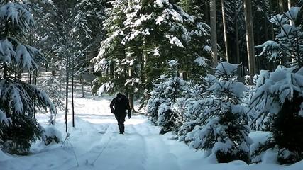 Fotograf im Schneewald