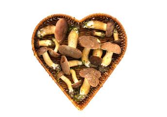mushrooms cep boletus Xerocomus badius in heart form basket