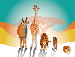 safari zoo cover animals collection illustration