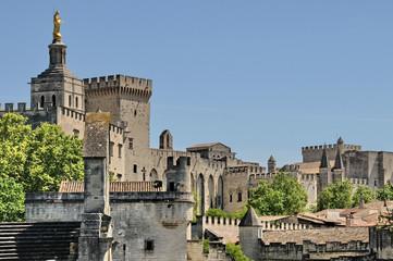 Avignone, panorama
