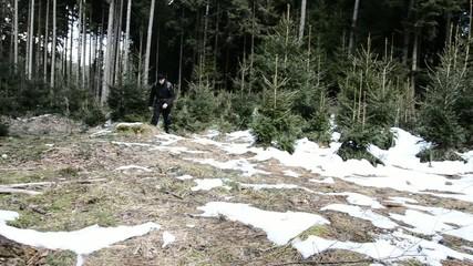 Mann geht im Wald