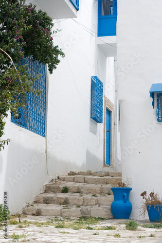 Blue doors, window and white wall of building in Sidi Bou Said, © myrka