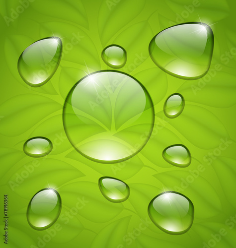 Keuken foto achterwand Paardebloemen en water Water drops on fresh green leaves texture
