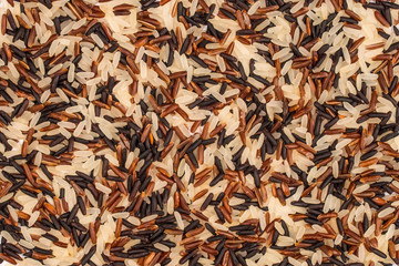 Food background with of rice variety . rice mixture. brown rice,
