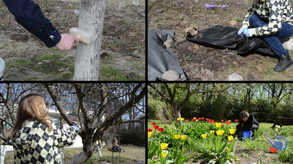 Spring season garden works. Woman gardener. Video clips collage