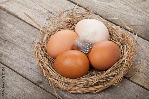 Leinwanddruck Bild Eggs nest