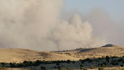 Arizona Wildfire / Forest Fire