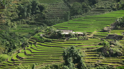 Time Lapse of Scenic Rice Terraces in the Northern Mountains Sapa Vietnam