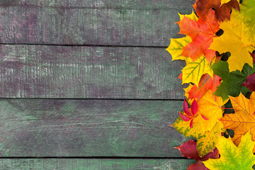 Beautifull colorfull autumn leaves over wooden background.