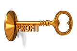 Profit - Golden Key is Inserted into the Keyhole.
