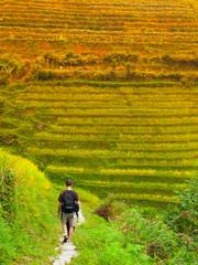 Tourist on Dragon's Backbone Rice Terraces