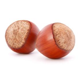 hazelnut or filbert nut isolated on white background cutout