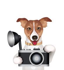 Hund mit Fotoapparat
