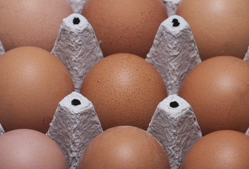 Nine eggs close-up in a paper holder