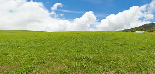 verte colline, Plaine des Cafres, île de la Réunion