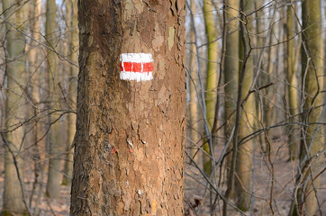 Red sign on tree for hiking tourism