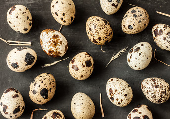 Quail eggs with hay on black background - easter