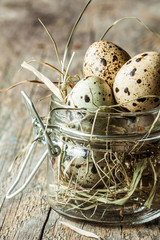 Easter - quail eggs with hay in a jar on an old vintage wood