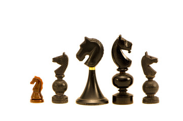 various Black horse chess  pieces isolated on white background
