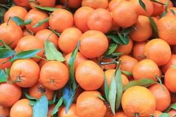 frutta di stagione mandaranci