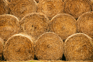 Straw bales texture