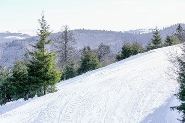Winter landscape of ski slope in Vosges mountain, France