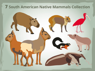 7 south american native mammals Collection