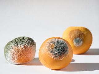 Naranjas en estado de putrefacción