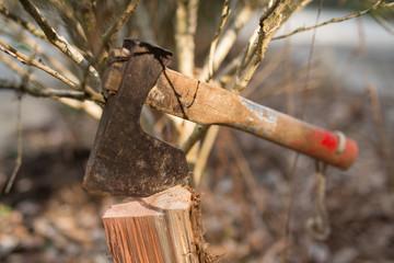 薪に刺さった古びた斧