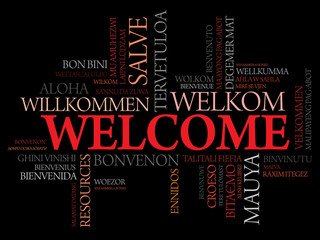 Welcome in different languages word cloud, business concept