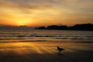 由比ガ浜の夕日