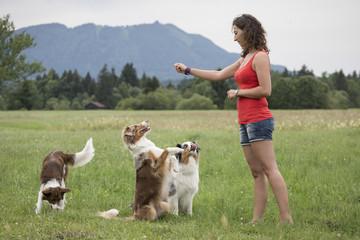 Hundetrio mit Hundetrainerin