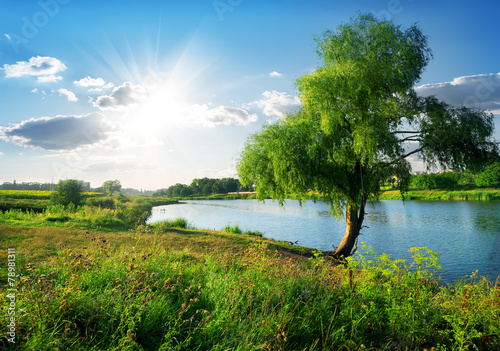 Leinwandbild Motiv Near river