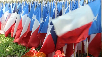 American Flag and Texas Decorations on Memorial Day