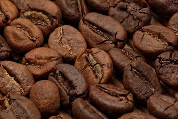 Roasted coffee bean macro shot under soft light