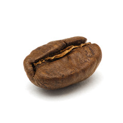 Roasted coffee bean macro shot with extended depth of field