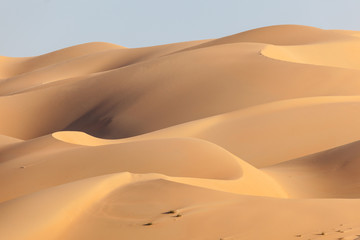 Dunes in the Empty Quarter desert. Abu Dhabi, UAE