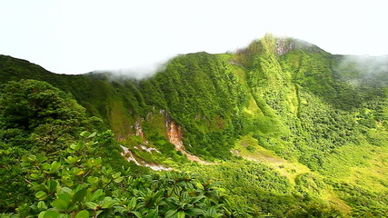 Saint Kitts Rainforest Crater