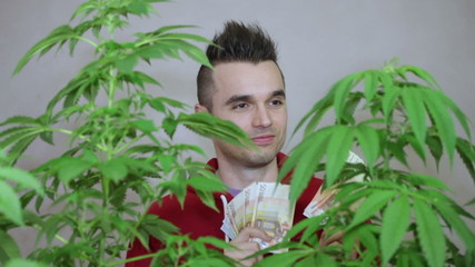 Young happy man with Cannabis plants enjoying Euro banknotes.