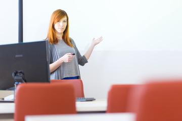 Businesswoman giving a talk.