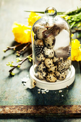 quail eggs with easter decorations
