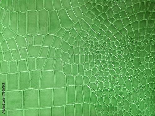 Tuinposter Stof Crocodile skin pattern